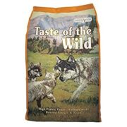Taste of the Wild High Prairie Puppy1